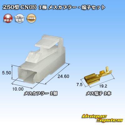 画像1: 矢崎総業 250型 CN(B) 1極 メスカプラー・端子セット