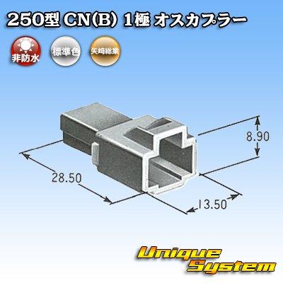 画像4: 矢崎総業 250型 CN(B) 1極 オスカプラー