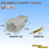 矢崎総業 250型 CN(B) 非防水 1極 オスカプラー・端子セット