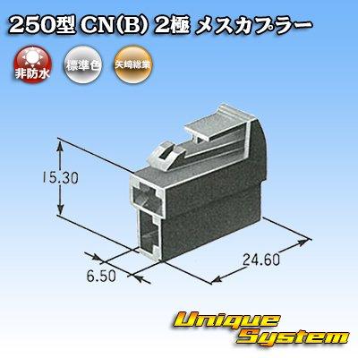 画像4: 矢崎総業 250型 CN(B) 2極 メスカプラー