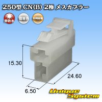 矢崎総業 250型 CN(B) 非防水 2極 メスカプラー
