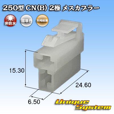 画像1: 矢崎総業 250型 CN(B) 2極 メスカプラー