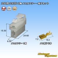矢崎総業 250型 CN(B) 非防水 2極 メスカプラー・端子セット