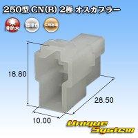 矢崎総業 250型 CN(B) 非防水 2極 オスカプラー