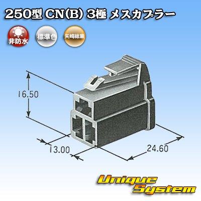 画像4: 矢崎総業 250型 CN(B) 3極 メスカプラー