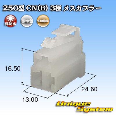 画像1: 矢崎総業 250型 CN(B) 3極 メスカプラー