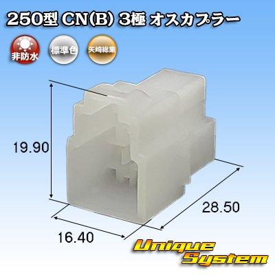画像1: 矢崎総業 250型 CN(B) 3極 オスカプラー