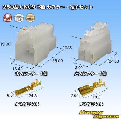 画像1: 矢崎総業 250型 CN(B) 3極 カプラー・端子セット
