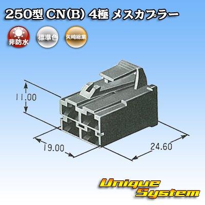 画像4: 矢崎総業 250型 CN(B) 4極 メスカプラー