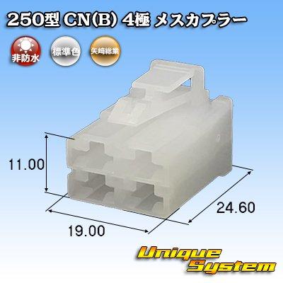 画像1: 矢崎総業 250型 CN(B) 4極 メスカプラー