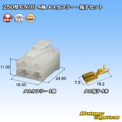 画像1: 矢崎総業 250型 CN(B) 4極 メスカプラー・端子セット