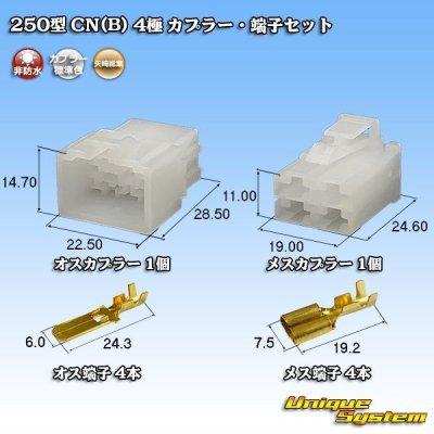 画像1: 矢崎総業 250型 CN(B) 4極 カプラー・端子セット