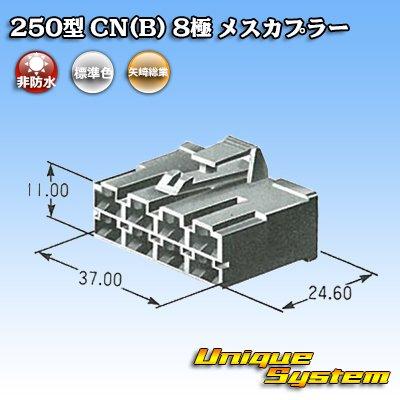画像4: 矢崎総業 250型 CN(B) 8極 メスカプラー
