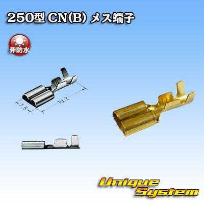 画像1: 矢崎総業 250型 CN(B) メス端子